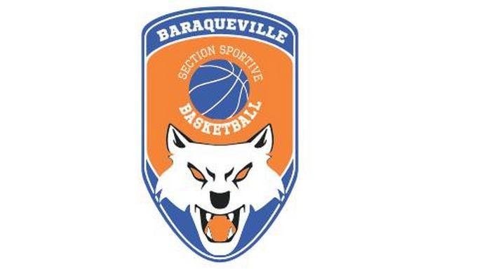 logo section basket.jpg